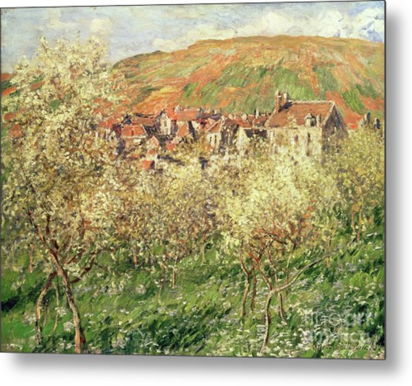 Apple Trees In Blossom Metal Print