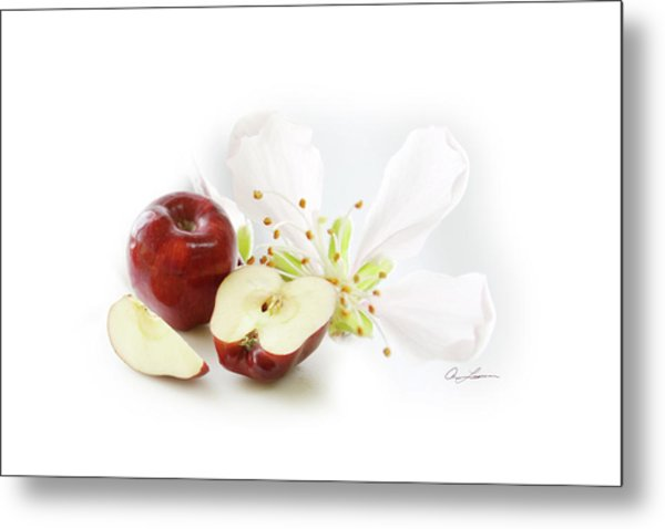Apples And Blossom Metal Print