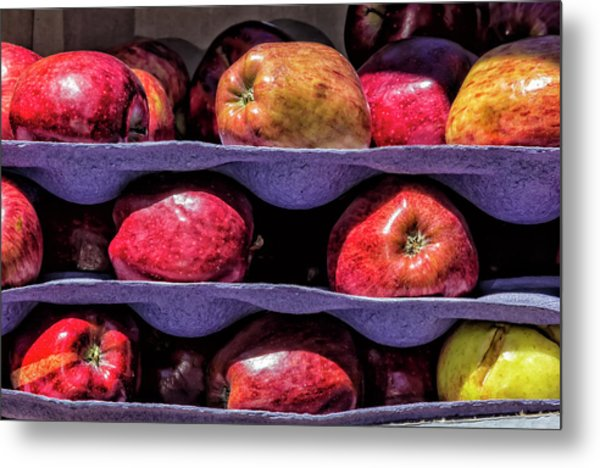 Apples And Sunlight Metal Print by Robert Ullmann