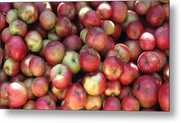 Apples In The Fall Metal Print by Andrea Kilbane