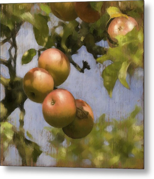 Apples On Wood Panel Metal Print