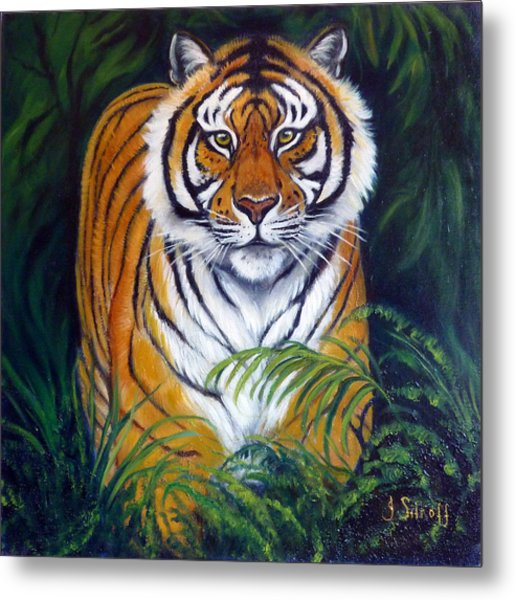 Approaching Tiger Metal Print by Janet Silkoff
