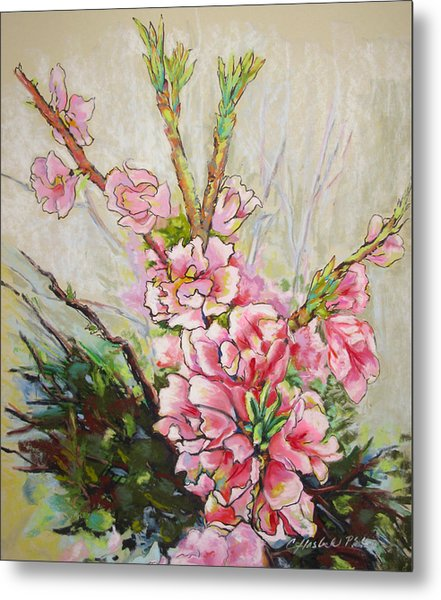 Apricot Energy Metal Print by Carole Haslock