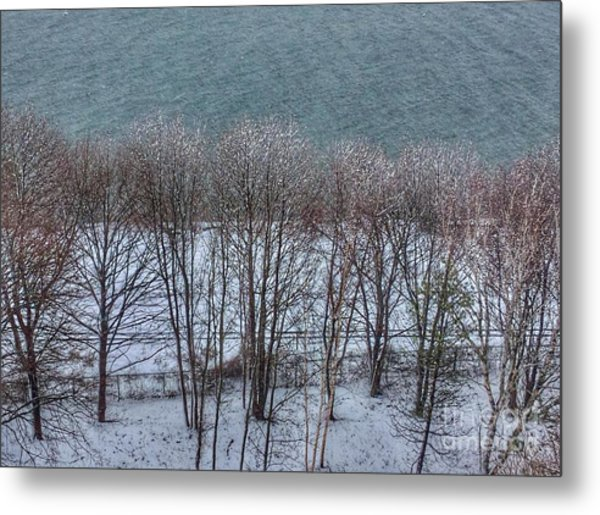 April Snow On Portland Trails Metal Print
