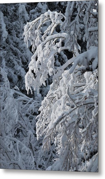 April Snow Metal Print