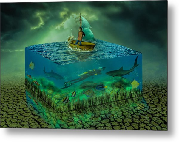 Aquatic Life Metal Print