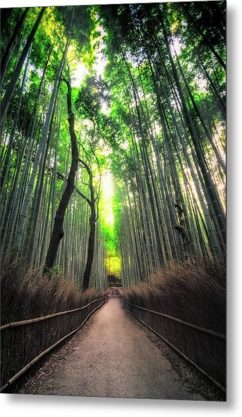 Arashiyama In Kyoto, Japan Metal Print