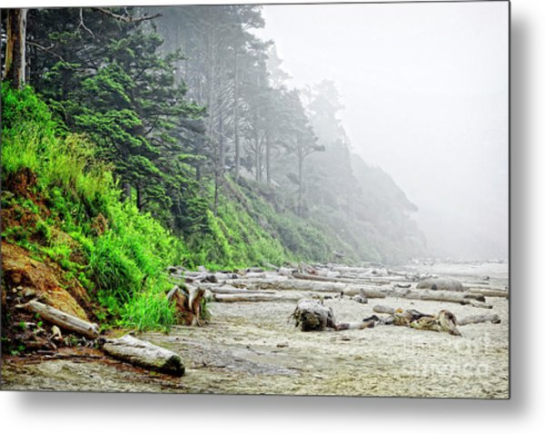 Arcadia Beach In Morning Fog Metal Print by Lincoln Rogers