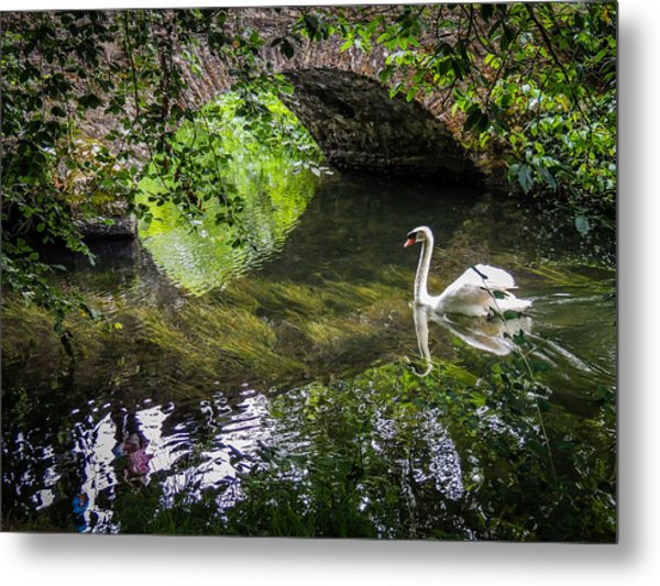 Arched Bridge And Swan At Doneraile Park Metal Print