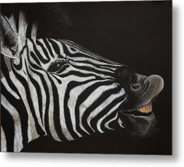 Are My Teeth Clean Yet Metal Print by Don MacCarthy