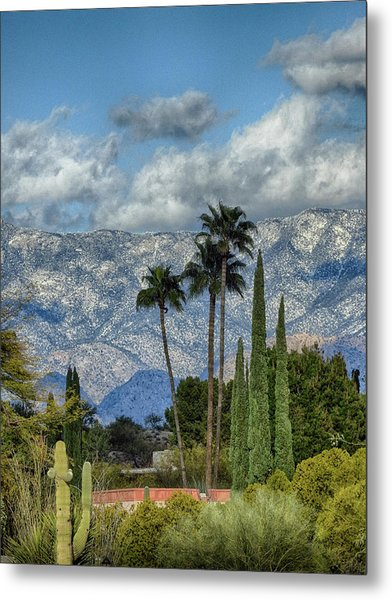 Arizona Snow Metal Print