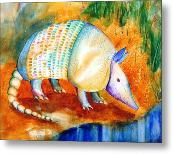 Armadillo Reflections Metal Print