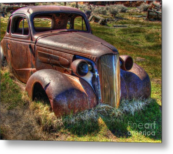 Arrested Decay Metal Print