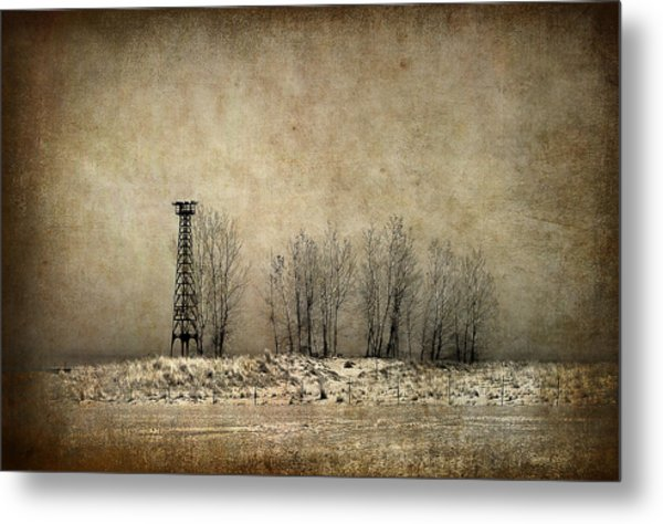 Art On The Beach Metal Print