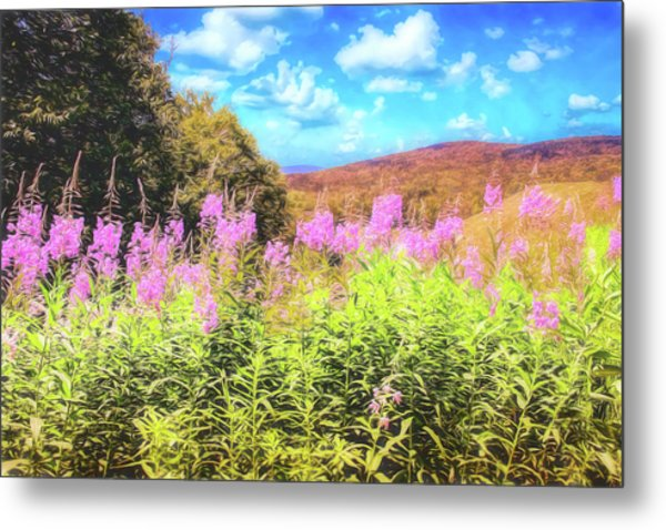 Art Photo Of Vermont Rolling Hills With Pink Flowers In The Foreground Metal Print