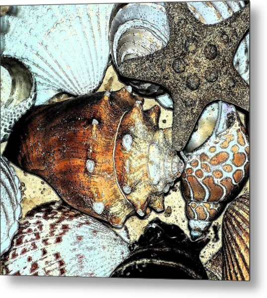 Art Shell 3 Metal Print
