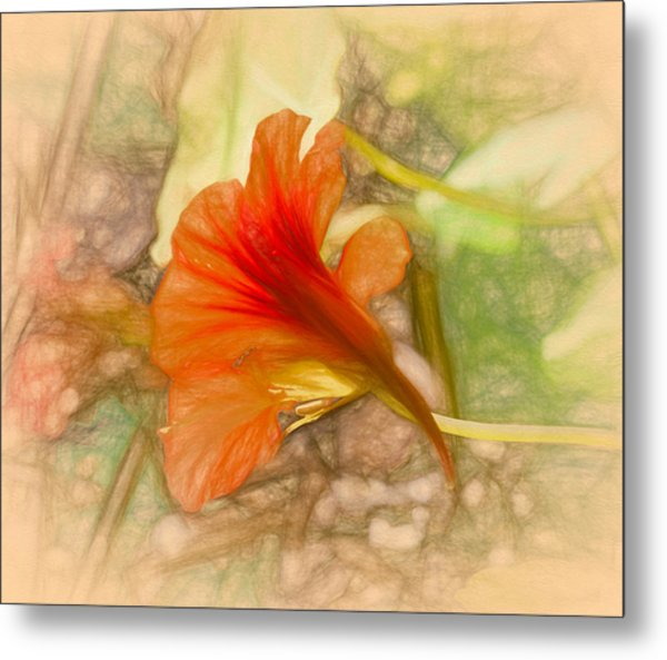 Artistic Red And Orange Metal Print