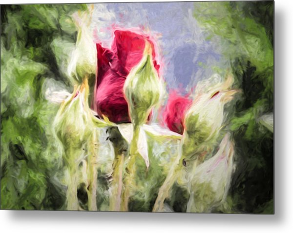 Metal Print featuring the photograph Artistic Rose And Buds by Leif Sohlman