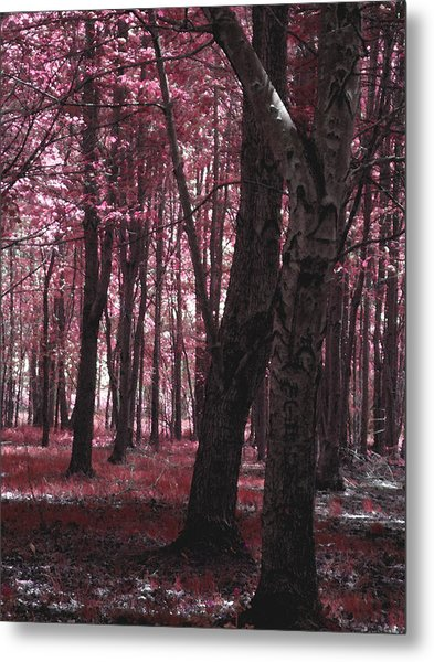 Metal Print featuring the photograph Artistic Tree In Pink by Michelle Audas