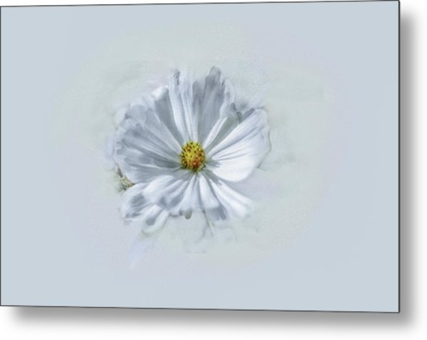 Metal Print featuring the photograph Artistic White #g1 by Leif Sohlman