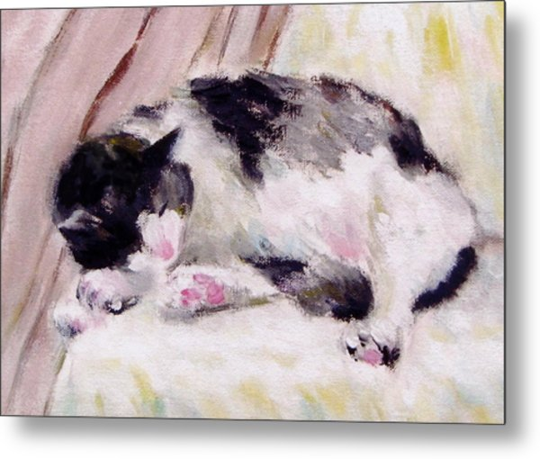 Artist's Cat Sleeping Metal Print