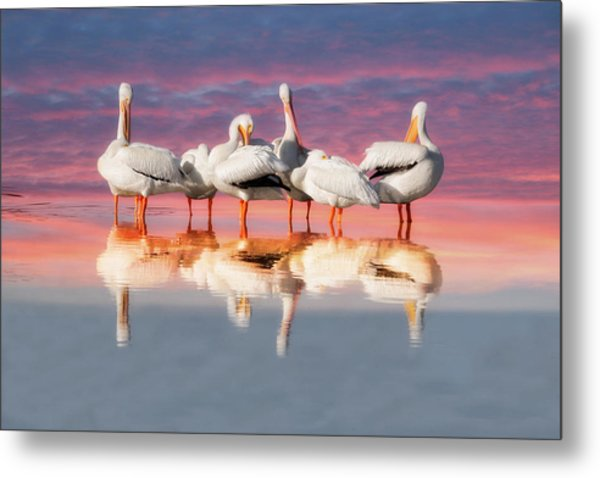 Metal Print featuring the photograph As The Sun Goes Down by Kim Hojnacki