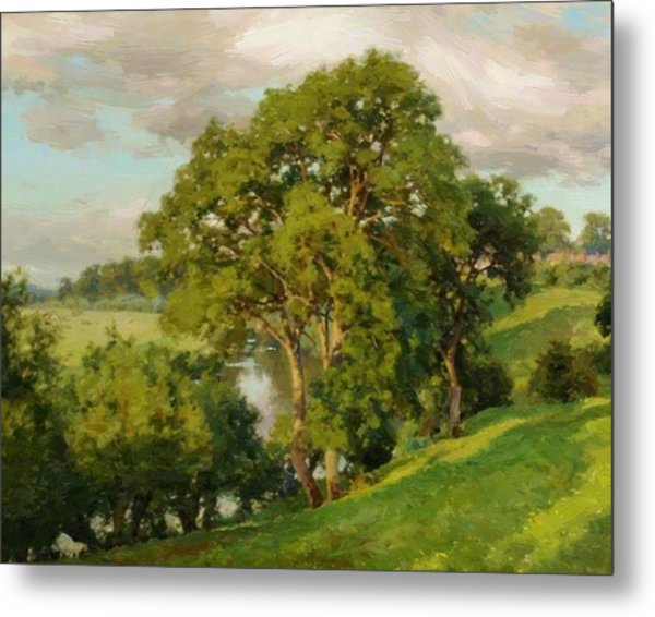 Ash Trees At Cropthorne Worcestershire Metal Print