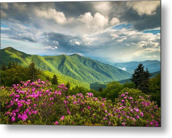 Asheville Nc Blue Ridge Parkway Spring Flowers Metal Print