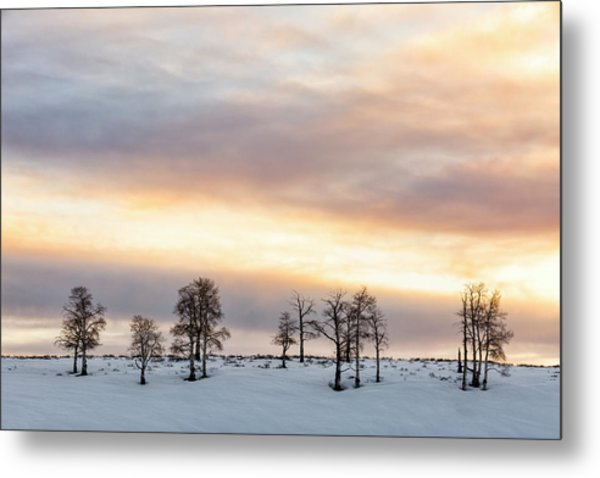 Aspen Hill At Sunset Metal Print