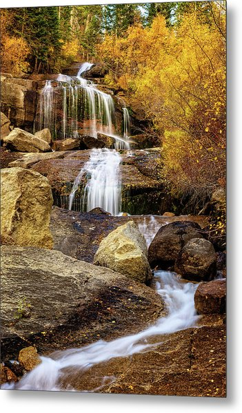 Aspen-lined Waterfalls Metal Print
