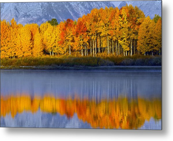 Aspen Reflection Metal Print