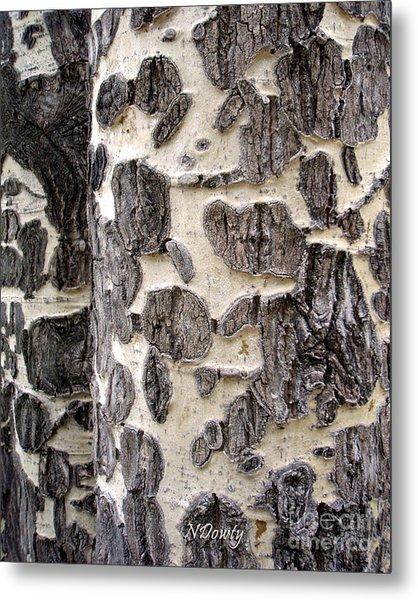 Aspen Scars Metal Print