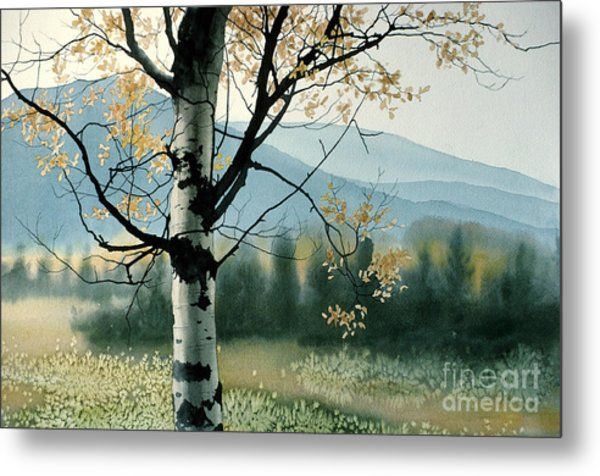 Aspen Valley Metal Print
