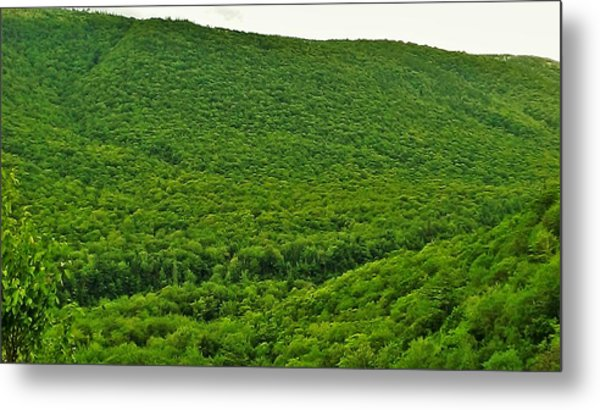 Aspy Valley 6 Metal Print