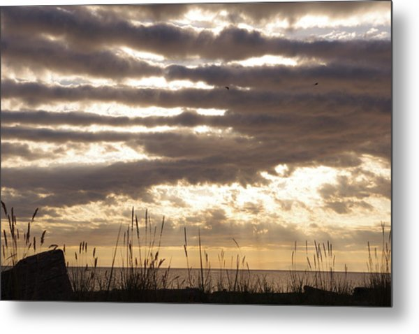 At Dusk West Coast Bc Canada Metal Print by Ming Yeung