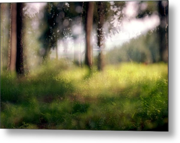 At Menashe Forest Metal Print