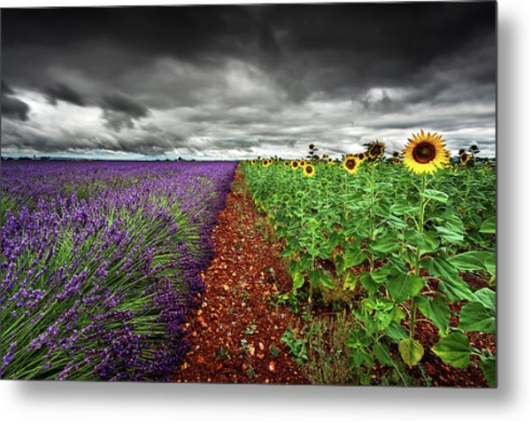 At The Middle Metal Print