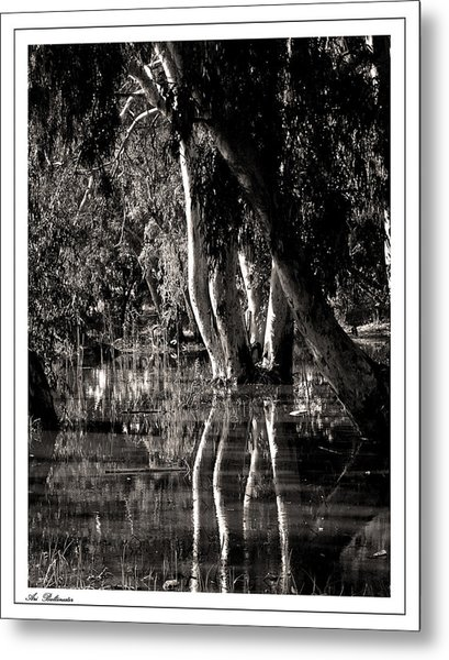 At The Swamp Metal Print