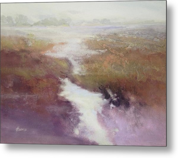Atlanticsaltmarsh Metal Print