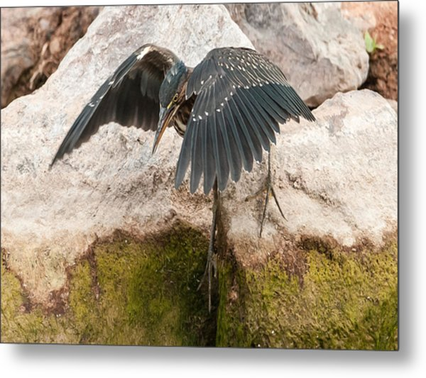 Attack Mode Metal Print