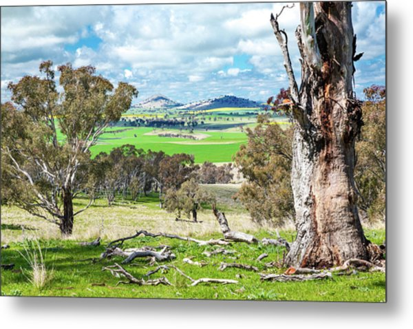 Australian Countryside Metal Print