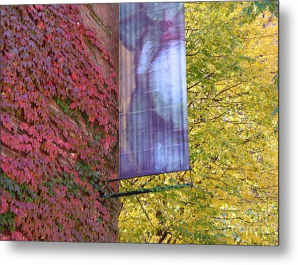 Autum Colors Metal Print by Robyn Leakey