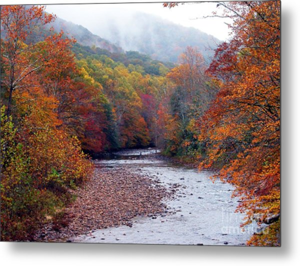 Autumn Along Williams River Metal Print