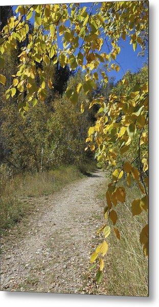 Autumn At Iron Creek Metal Print