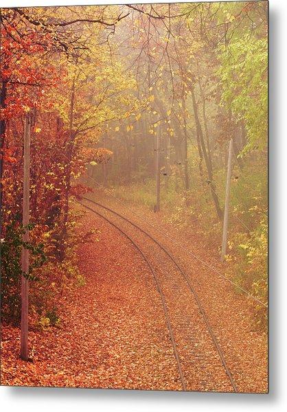 Autumn At Lake Harriet  Metal Print