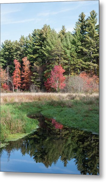 Autumn At The River Metal Print