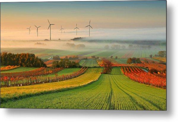 Autumn Atmosphere In Vineyards Metal Print