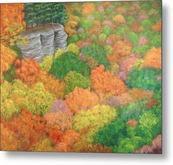 Autumn Beauty Metal Print by Hollie Leffel