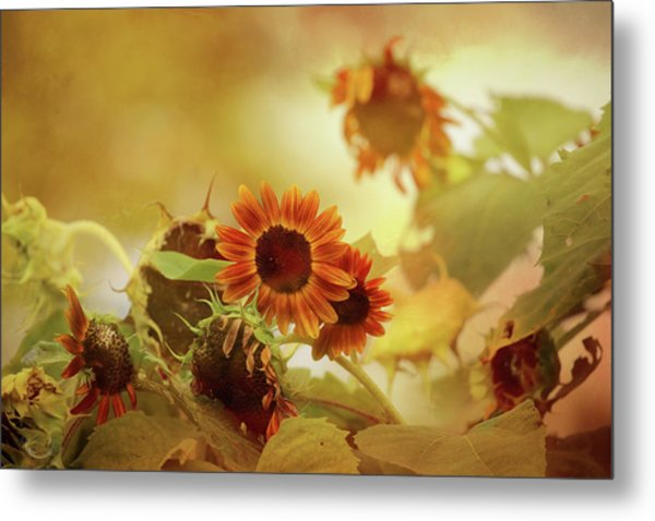 Autumn Blessings Metal Print