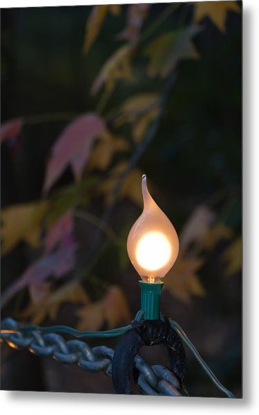 Autumn Bulb Metal Print